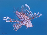 Exotic Fish Paintings - Zebra Lionfish by Michael Allen