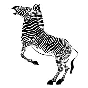 Striped Drawings - Zebra by Michal Boubin