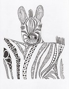 Zoo Drawings Prints - Zebra Print by Paula Dickerhoff