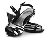 High Heeled Art - Zebra print pumps by Blink Images