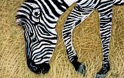 Zebra Pastels - Zebra Zebra by Jan Amiss
