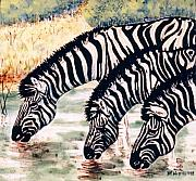 Horses Ceramics - Zebras At the Waterhole by Dy Witt