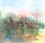 Zebras Framed Prints - Zebras In The Mist Framed Print by Arline Wagner