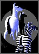 Zebredee Print by Tom Dickson