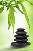 Bamboo Posters - Zen basalt stones and bamboo Poster by Pics For Merch