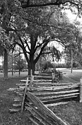 Split Rail Fence Framed Prints - ZigZag  9284 Framed Print by Guy Whiteley