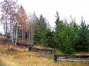 Ranching Art - Zigzag Rail Fence by Will Borden