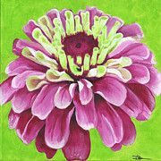 Fushia Painting Framed Prints - Zinnia Framed Print by Debbie Brown