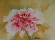 Zinnia Paintings - Zinnia by Gretchen Bjornson