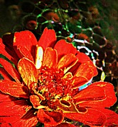 Decorative Glass Art - Zinnia with Glass by Chris Berry