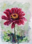 Zinnia Paintings - Zinnia  by Zaira Dzhaubaeva