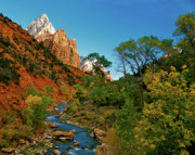 Zion National Park Framed Prints - Zion Canyon Virgin River Framed Print by Ed  Riche