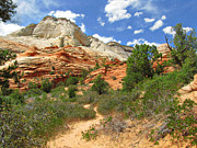 Sandstone Formation Prints - Zion National Park - A Picturesque Wonderland Print by Christine Till