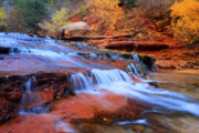 Angel Falls Posters - Zion National Park in Autumn waterfall Poster by Pierre Leclerc