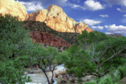 Slickrock Photo Prints - Zion National Park Print by Utah Images
