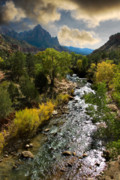 Zion National Park Framed Prints - Zion River Framed Print by Harry Spitz