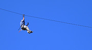 Gatlinburg Framed Prints - Zip Line Fun Framed Print by Elizabeth Coats