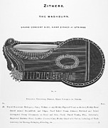 Zither Prints - Zither Print by Granger