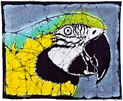 Macaw Mixed Media - Zoe by Gene Tilby