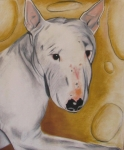 Dog Print Pastels Framed Prints - Zoe Framed Print by Michelle Hayden-Marsan