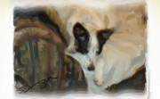 Herding Digital Art - ZoesCouch by Susan Dangar