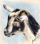 Colored Background Drawings - Zoey The Goat by Scarlett Royal