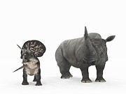 Natural Size Prints - Zuniceratops Dinosaur And Rhino Print by Walter Myers