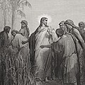 Jesus And His Disciples In The Corn Field by Gustave Dore