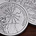 Silver Bullion Debt And Death by Tom Mc Nemar
