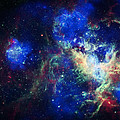 Tarantula Nebula 3 by Jennifer Rondinelli Reilly - Fine Art Photography