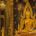 The Main Hall Of Wat Thardtong With Golden Buddha Statue by Anek Suwannaphoom