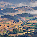 A Foggy Day by Ayhan Altun