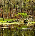 Arkansas Tranquility by Benjamin Yeager