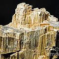 Asbestos by Millard H. Sharp