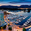 Coal Harbour In Vancouver by Alexis Birkill