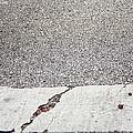 Cracked by Margie Hurwich