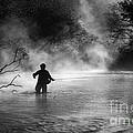 Fly Fishing by Iris Greenwell