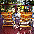 Forest Cottage Deck And Chairs by Elena Elisseeva