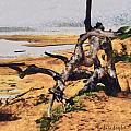 Gnarly Tree by Barbara Snyder