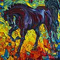 Horse by Willson Lau