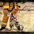 Hurricane Sandy Fireman And Dog by Jessica Cirz