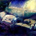 Nap Time Dreams by YoMamaBird Rhonda