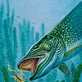 Pike And Jig by Jon Q Wright