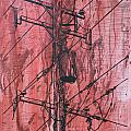 Pole With Transformer by William Cauthern