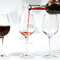 Pouring Red Wine Into Glass by Patricia Hofmeester