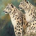 Snow Leopards Print by David Stribbling