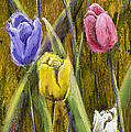 Splashy Tulips by Vic  Mastis