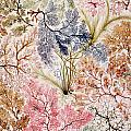 Textile Design by William Kilburn