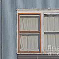 Windows by Jim Wright