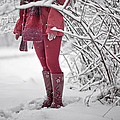 Winter... by Renata Vogl
